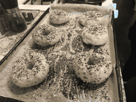 Uncooked bagels on a tray