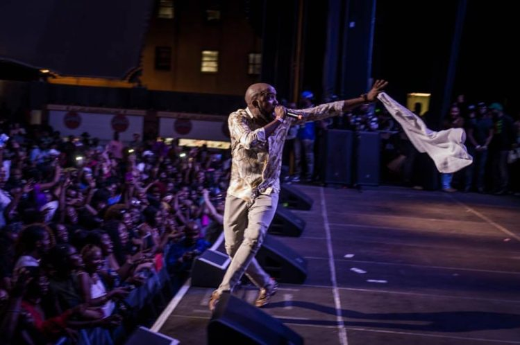 21016040 1611436805585268 5347043343431470679 o 1024x681 - Africa Music Fest In New York