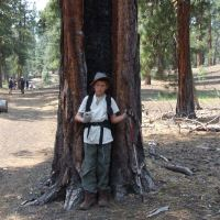 My son in front of a hollowed out redwood at Lassen, near Cinder Cone