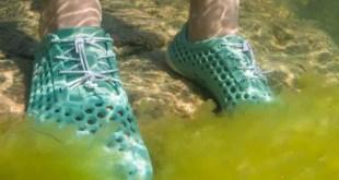Des baskets à base d'algues qui dépolluent les mers