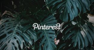5 conseils pour être créatif sur Pinterest