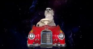 chien-voiture-rouge-nuit-lunettes