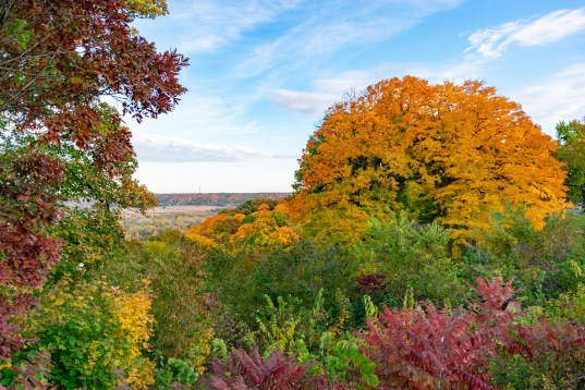 grandview drive fall foliage