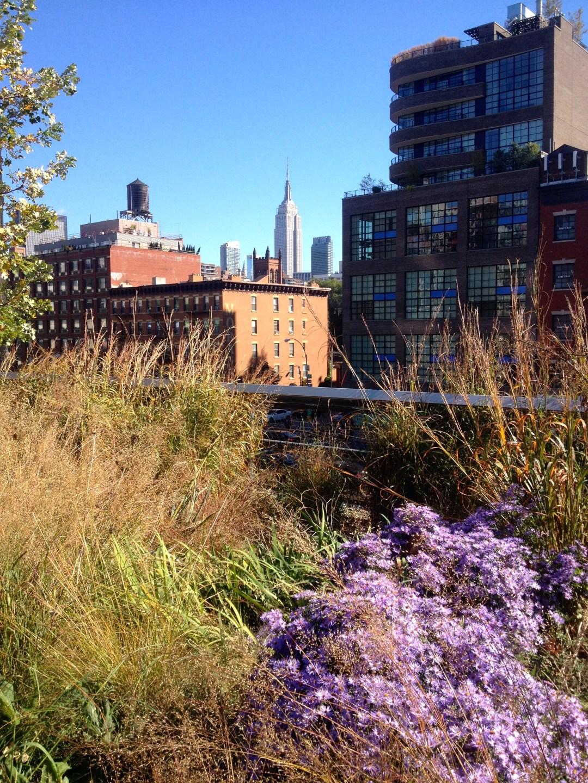 blog-new-york