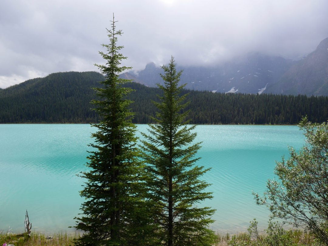 rivière-bow-canada