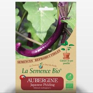 Japanese Pickling, une aubergine originale, une variété japonnaise plus longue, courbée et plus fine que l'aubergine classique !
