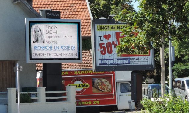 « Un emploi pour la rentrée » : ils affichent leur CV en grand à Dijon