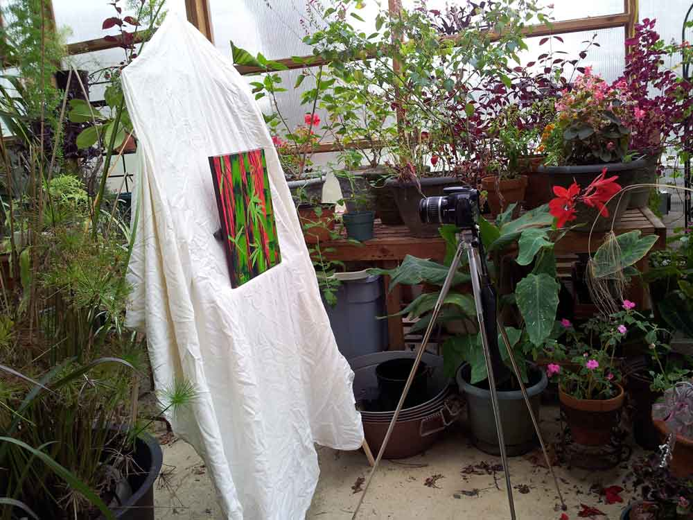photographing art in a greenhouse