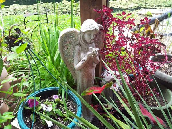 My angel statue holding a bird