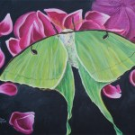 green Luna moth on pink petals with a charcoal colored background