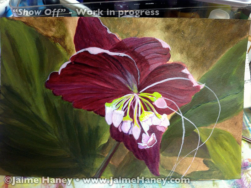 Show-Off-Bat-Flower-painting-WIP_1692