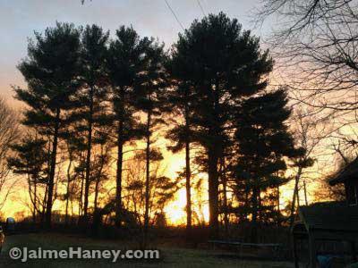 beautiful sunrise in Posey County, Indiana