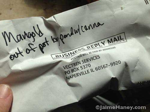 repurposed junk mail envelope