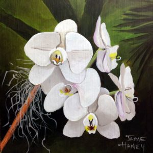 white orchid painting
