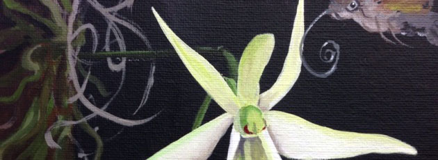 Day 30 Ghost Orchid and Sphinx Moth painting