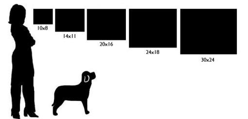 Prints shown in scale for comparison