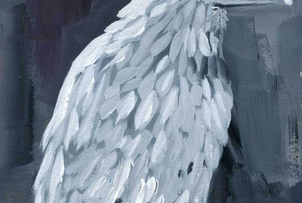 Silent Observation White Raven Print