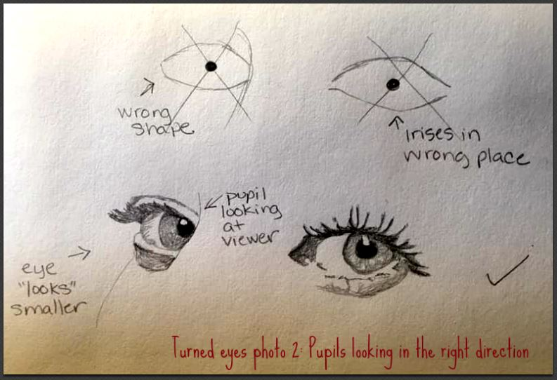 turned eyes pupils looking at viewer