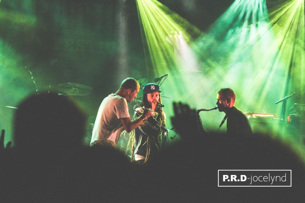 DANAKIL  - Summer Vibration Reggae Festival - Crédits photos : jocelynd.fr