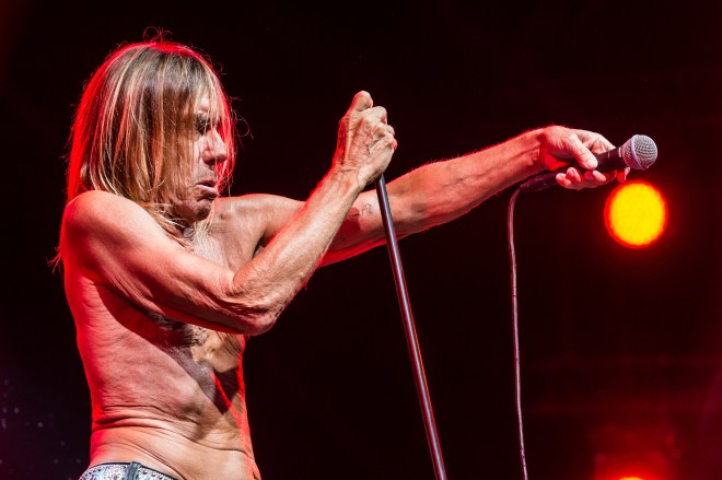 FAV Colmar 2015 - Iggy Pop - Crédit photo : Benoit FACCHI