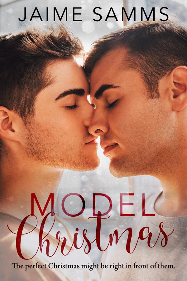 Book Cover: Model Christmas