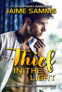 Book Cover: Thief in the Light
