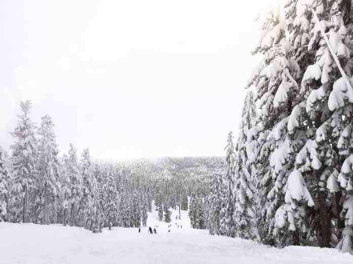 What to do in South Lake Tahoe in February