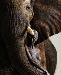 Elephant and Human (by Lennette Newel)