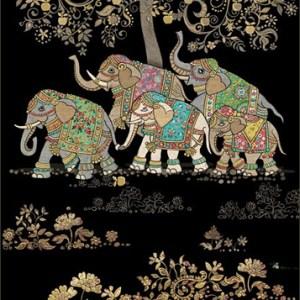 Carte Kiub éléphants 4,50 €