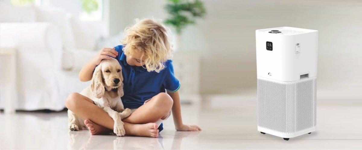 jair空氣清淨機|寵物清淨機貓毛清淨機味道抗過敏抗塵螨