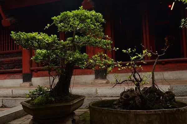 Maison de la littérature - Hanoi - Vietnam