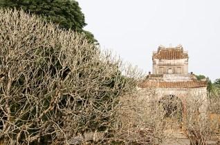 Les environs de Hué - J'ai Une Ouverture - Tour du Monde (19)