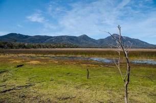 Une rando au Freycinet National Park - Tasmanie -J'ai une ouverture - Tour du Monde (21)