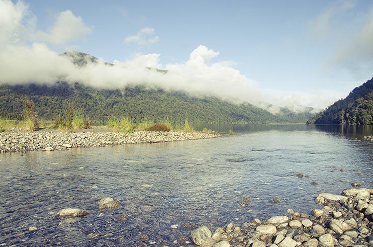 La jungle et les plages de la West Coast - Nouvelle Zélande - Jaiuneouverture Tour du Monde (10)