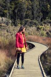 La jungle et les plages de la West Coast - Nouvelle Zélande - Jaiuneouverture Tour du Monde (12) copy