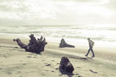 La jungle et les plages de la West Coast - Nouvelle Zélande - Jaiuneouverture Tour du Monde (3)