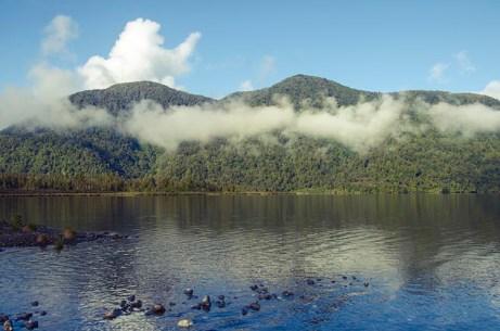 La jungle et les plages de la West Coast - Nouvelle Zélande - Jaiuneouverture Tour du Monde (7)