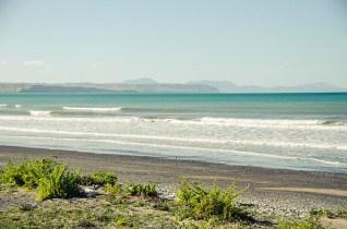 On a vu des otaries à Kaikoura - Nouvelle Zélande - Jaiuneouverture Tour du Monde (8)