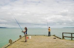 Chouchoutés par Lindy et Tim à Tinopai - Nouvelle Zélande (12)