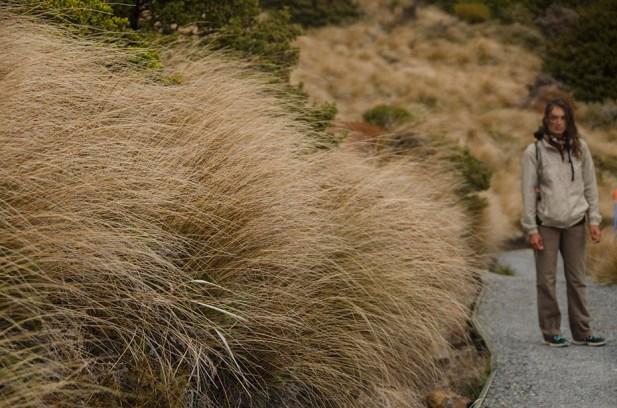 Une splendide randonnée en Mordor – le Tongariro Crossing (13)