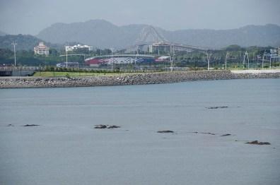 Balade dans Panama Ciudad - Panama (13)