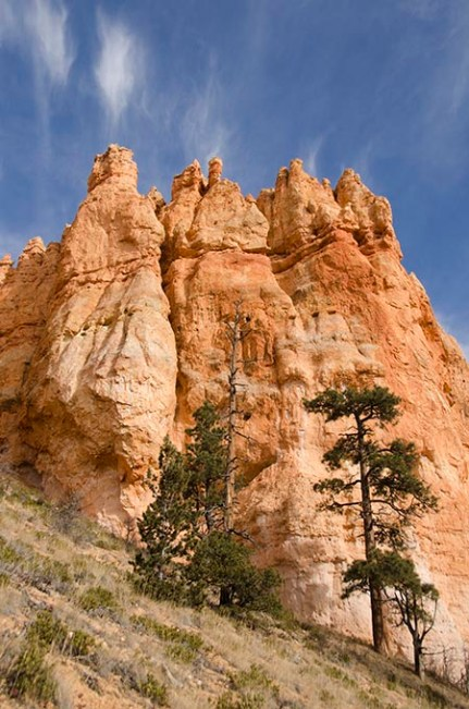 Le Bryce Canyon - Utah - USA (15) copy