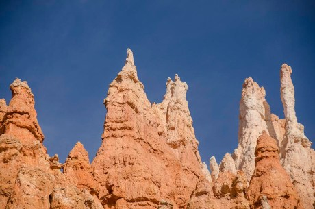 Le Bryce Canyon - Utah - USA (17)