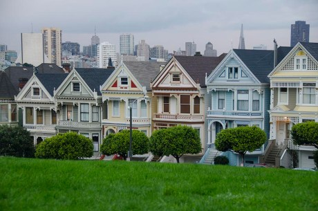 Les Seven Painted Ladies