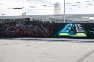 Street Art à Miami - USA (8)