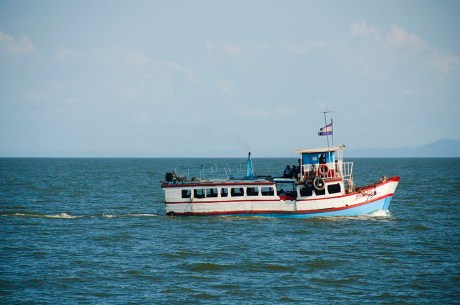 L'île d'Ometepe au Nicaragua (3)