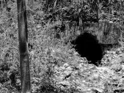 Le site de Uxmal au Mexique (16)