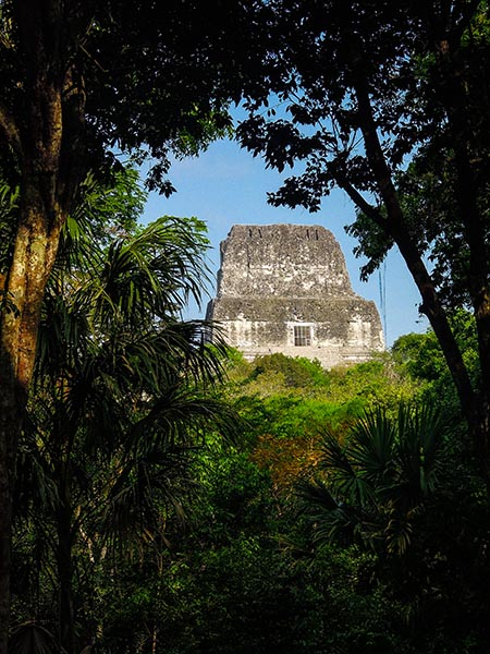 Tikal au Guatemala (10) copy