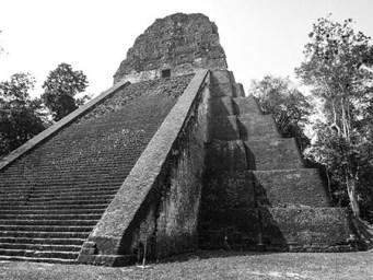 Tikal au Guatemala (16) copy