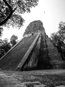 Tikal au Guatemala (18) copy
